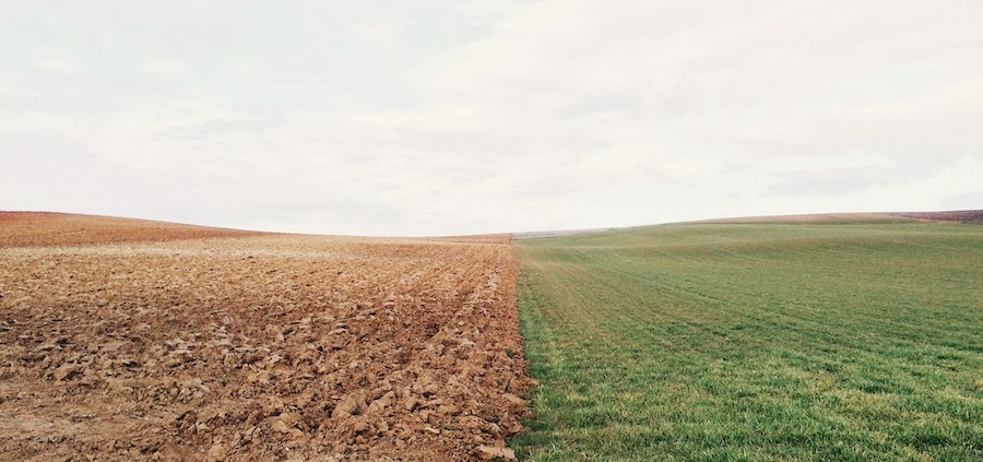 An open field with one half covered in grass and the other half dirt